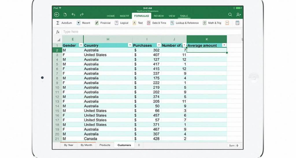 Excel iPad immagini