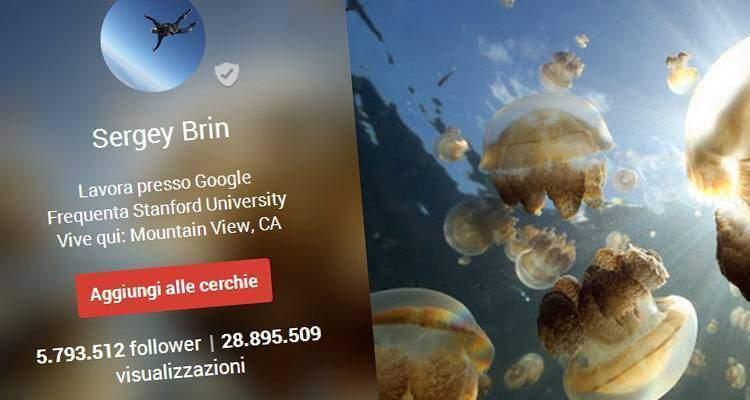 Google Plus, in chiaro le visualizzazioni dei Profili: altro che città fantasma!