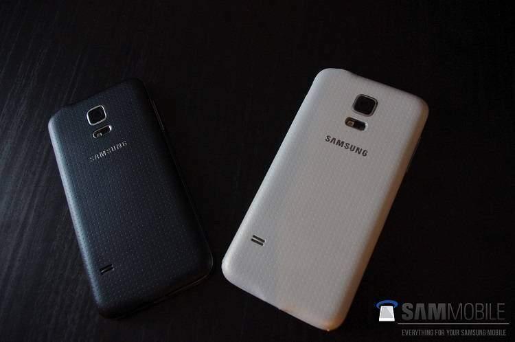 Samsung Galaxy S5 Mini: nuove fotografie dal vivo e il primo benchmark!