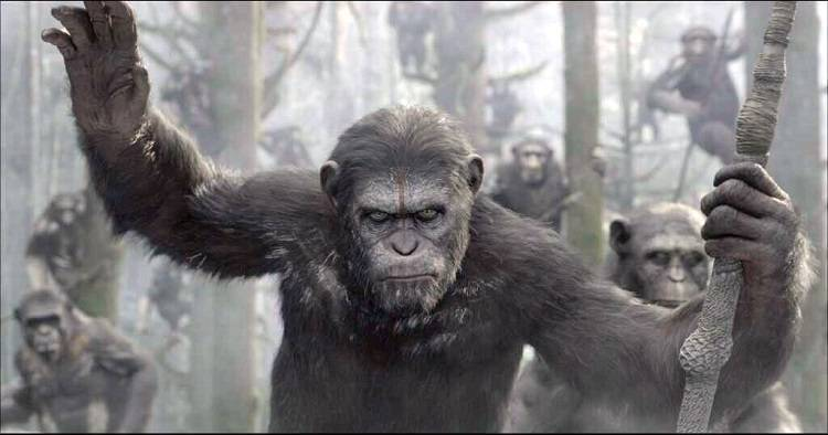 Apes Revolution – Il Pianeta delle Scimmie: recensione