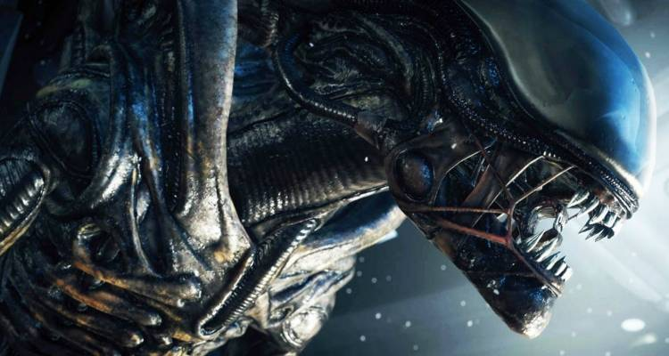 Problemi per l'ultima patch di Alien Isolation su Playstation 4