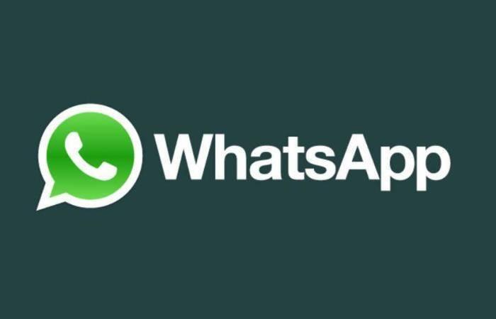WhatsApp, da oggi backup delle chat in Google Drive!