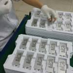 Foto delle presunte batterie del Samsung Galaxy S6
