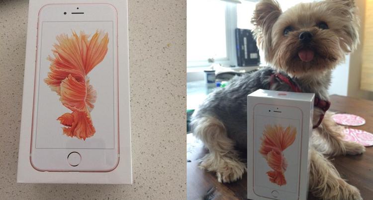 iPhone 6S arriva in anticipo e l'utente ne condivide i benchmark