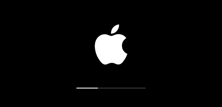 Apple regina degli smartphone acquistati a Natale
