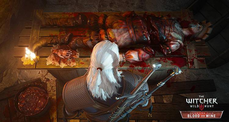The Witcher 3 Blood and Wine screenshot 02