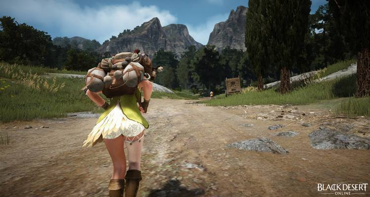 Black Desert Online: Guida all'auto-looping