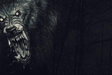 Werewolves Vampire