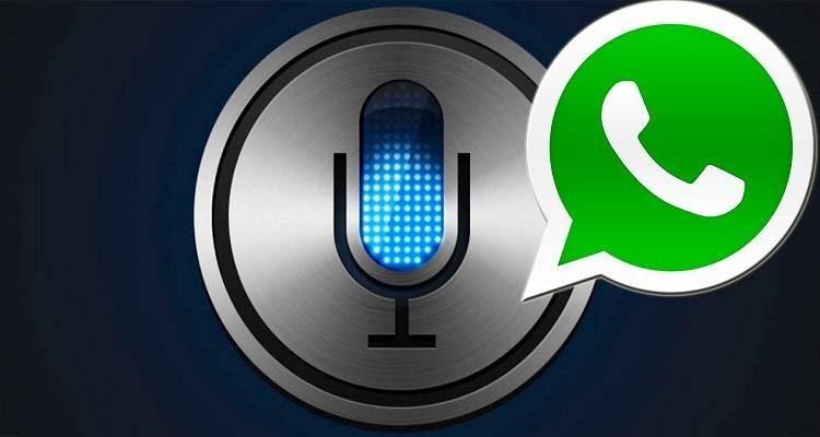 Whatsapp per iOS si aggiorna: Siri leggerà i messaggi ricevuti